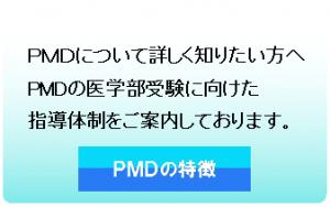 PMDの特徴・指導体制について